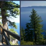 The Majestic Rubicon Trail and the Tiniest Shack of a Lighthouse, D.L. Bliss State Park