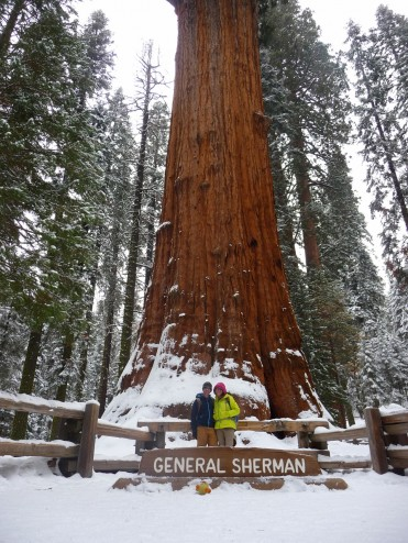 Posing in front of General Sherman Tree