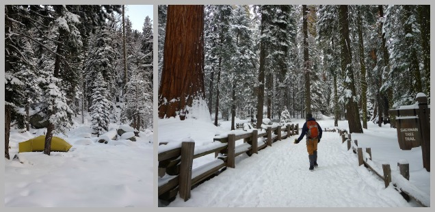 Winter Camping in Sequoia National Park