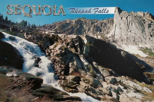 Tokopah Falls in the Summer Postcard