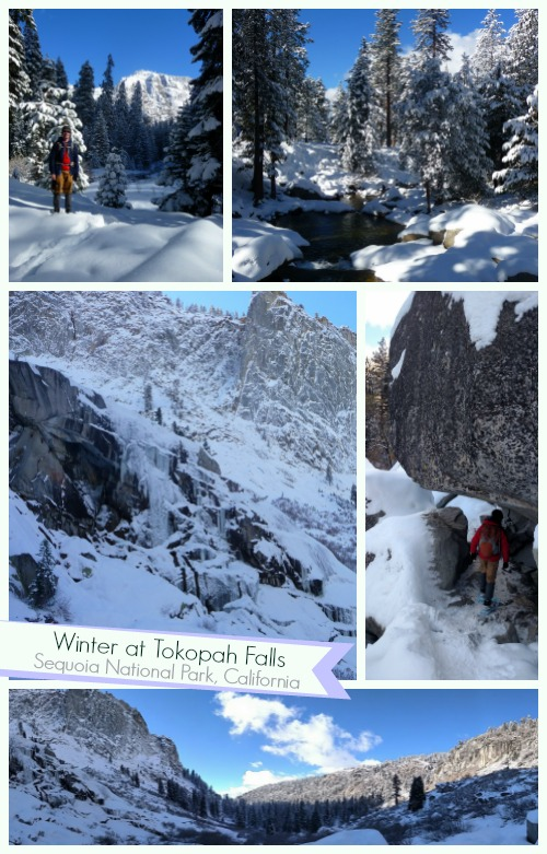 Tokopah Falls in Winter, Sequoia National Park