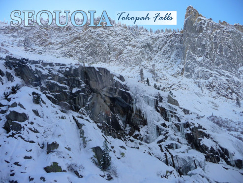 Winter Tokopah Falls Postcard