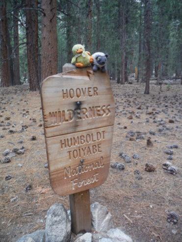 Hoover Wilderness Marker