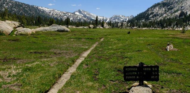 Kerrick Meadow, Yosemite