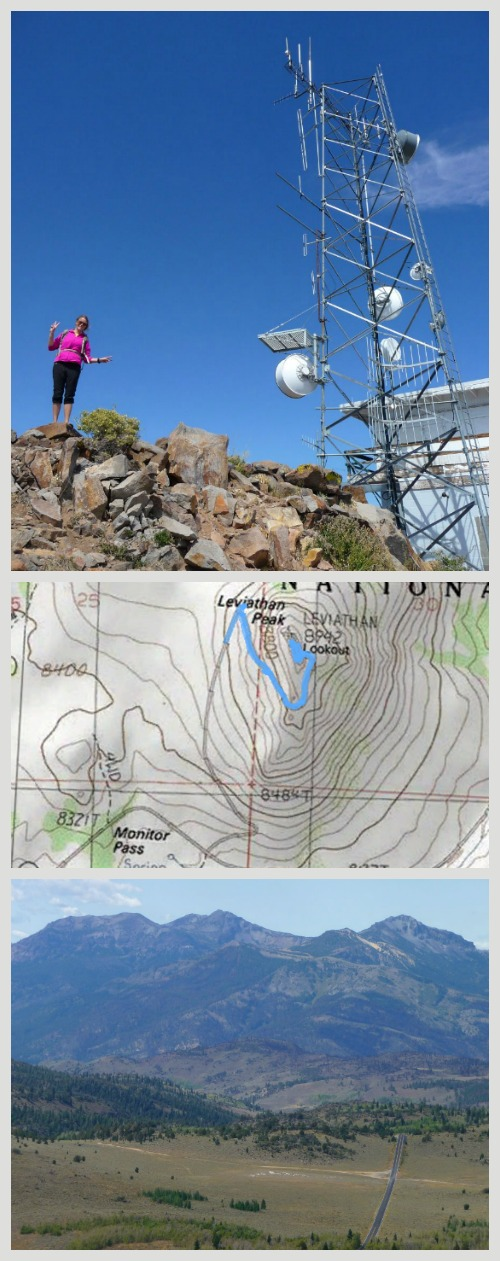 Leviathan Peak, Monitor Pass Hwy 4