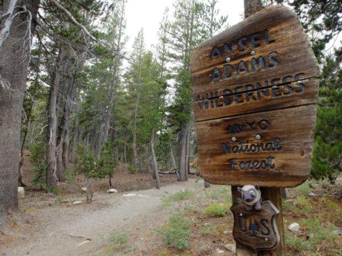 Ansel Adams Wilderness Sign