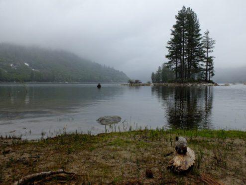 Lake Eleanor, Yosemite